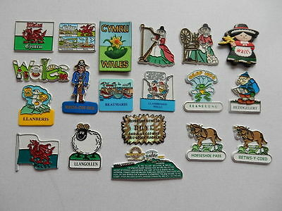 One Selected Rubber Souvenir Fridge Magnet from Wales