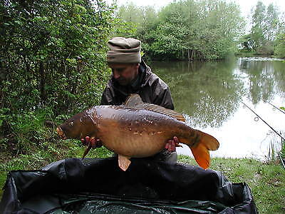 Luxury holiday lodge with fishing in West Norfolk - 30th May to 5th June '17