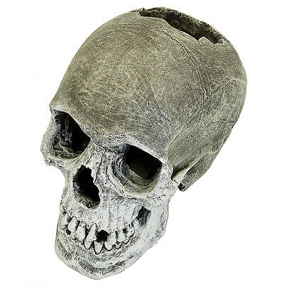Life Like Human Skull Aquarium Fish Cave Decoration Fish Tank Ornament