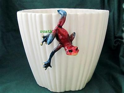 FROG RED Hang on pot TROPIC CRITTER Golden Pond RESIN Realistic Sculpture