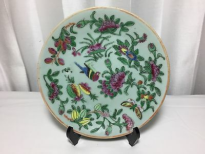 Antique Chinese Celadon Plate Famille Rose Hand Painted 19th Century China