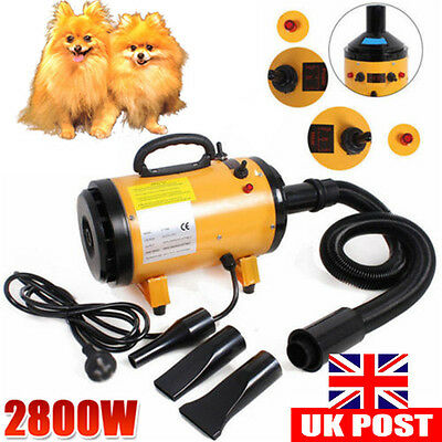 PRO.2800W Lowest Noise Pet Hair Blaster Blower Dog Cat Dryer Heater Grooming NEW