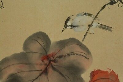 Hanging Scroll Japanese Painting grape bird Picture Japan Asian Ink Antique a368