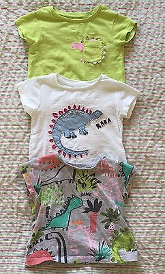 Baby Girls Dinosaur T-Shirts From Next 3-6 Months