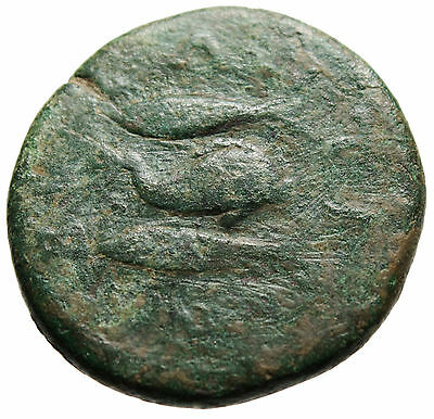 "Caracalla AE28 ""Dolphin & Two Tunny Fish"" Thrace Byzantion Rare Authentic Roman"