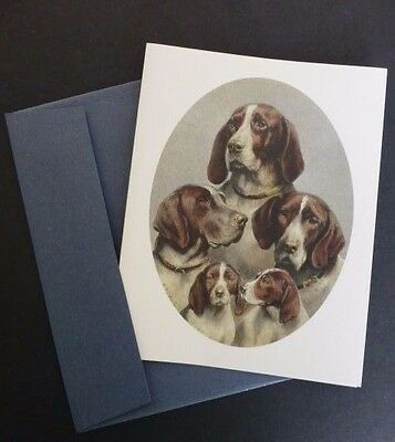 16 Pointer Dogs & Pups Vintage Drawing Quality Blank Cards & Envelopes, Boxed