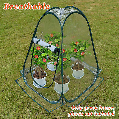 25''x25'''X34'' Mini Pop Up Greenhouse Outdoor Small Plant Gardening Green House