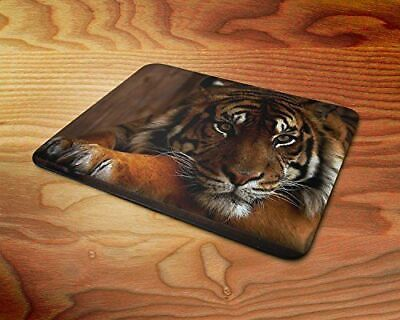 Big Cats Black and White Tiger Green Eyes Rubber Mouse Mat PC Mouse Pad D38