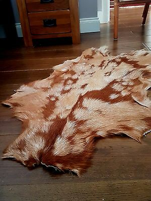Goatskin Rug, Soft fur Goat Hide Skin Animal Skin 100% Real Leather Rug cow