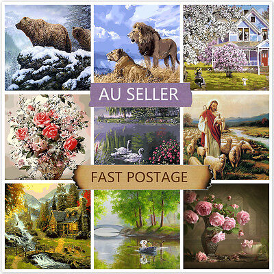 Acrylic Painting by Number Kit Canvas 40*50CM A81108162 AU STOCK HOME DECOR DIY
