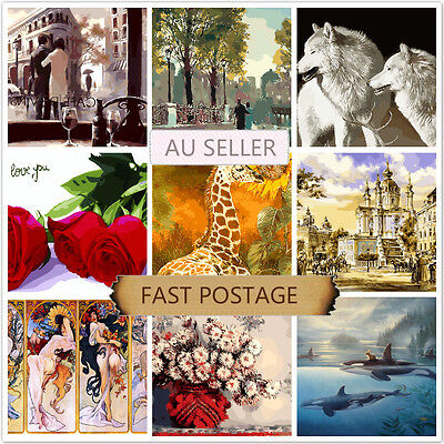 Acrylic Painting by Number Kit Canvas 40*50CM B80878143 AU STOCK HOME DECOR DIY