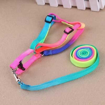 Pet Small Dog Puppy Cat Rabbit Kitten Nylon Harness Collar Leash Lead Adjustab G