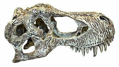 T-Rex Skull Small Aquarium Fish Cave Decoration Vivarium Ornament