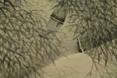Hanging Scroll Japan Picture Japanese Painting Bamboo Antique Asian Art old a025