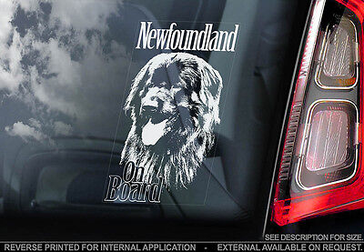 Newfoundland - Car Window Sticker - Dog Sign -V01