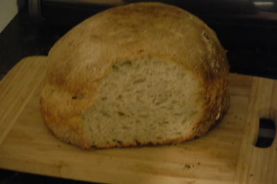 Authentic San Francisco Sourdough Bread  Starter ready to use