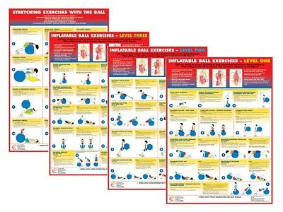 Gym Ball Exercise Posters Swiss Ball Fitness Chart