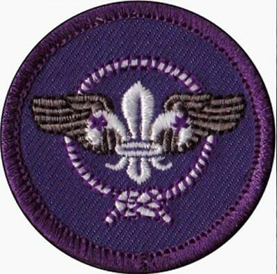 Air Scout world crest patch badge