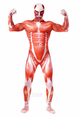 Attack On Titan Cosplay Costume Adult Muscle Muscular Bodysuit Halloween Suit