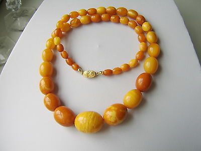 Bernsteinkette Oliven Butterscotch Amber Necklace Butterscotch