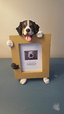 Bernese Mountain Dog Picture Frame New In Box
