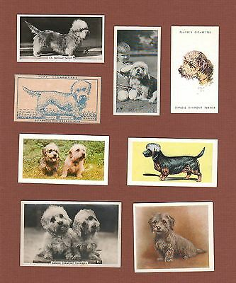 Dandie Dinmont dog cigarette trade cards set of 8