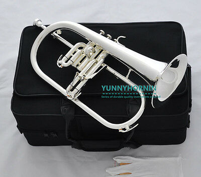 2017 Prof Silver Plated Bb Flugelhorn • Case & Accessories • New • Superb Flugel