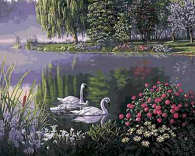 Acrylic Painting By Numbers Kit Canvas Swan Lake 50*40cm S5 8131 AU STOCK