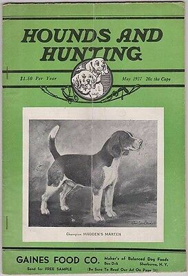 HOUNDS AND HUNTING Magazine May 1937, Beagles & Beagling H&H