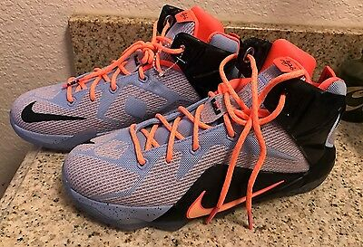 Lebron The Twelve Easter Basketball Shoes Size 6.5 Y New Without Original Box.