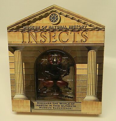 Insects Museum of Natural History Book and Kit New Sealed