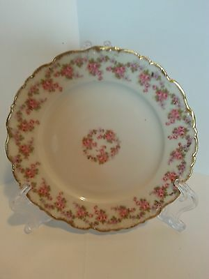 "Limoges Elite Works France Vintage Bread And Butter Plate ""bridal Wreath"""
