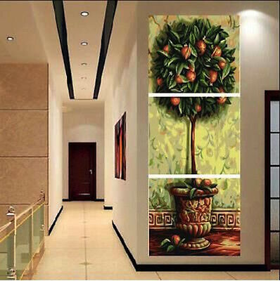 Set of Three 40*50cm Canvas Painting by Number Apple Tree S5 F3P002 HOME Int