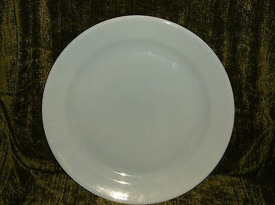 "T.S.& T. LuRay Pastel 14"" Round Chop Plate Serving Platter Sky Powder Blue"