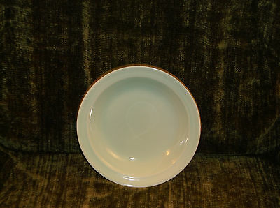 T.S.& T. LuRay Pastel Seafoam Minty Green Shallow Soup or Salad Bowl with Rim