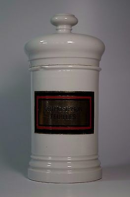 Antique Porcelain Pharmacy Apothecary Chemist Lidded Jar Orthosiphon Feuilles