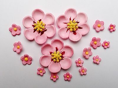 30 pink cherry blossoms edible sugar flowers  cake cupcake topper decoration