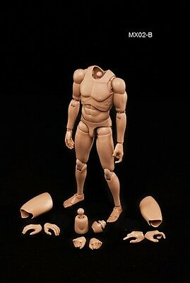 NEW 2014 Version Male Body Series with Highly Cost-Effective Edge 1/6 MX02-B