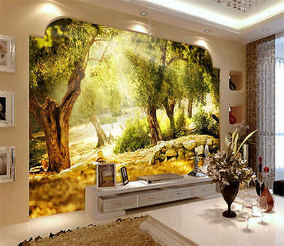 Olive Trees Sunlight Full Wall Mural Photo Wallpaper Print Kids Home 3D Decal