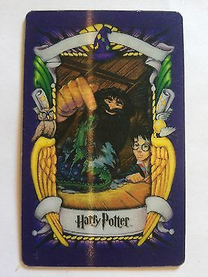 Harry Potter Chocolate Frog Card - Harry and Norbert