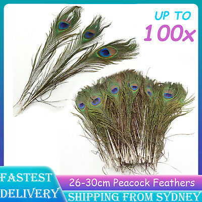 UP 100x 25-30cm Peacock Eye Feathers Tail Eye Feather Wedding Party DIY Crafts