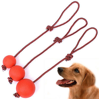 Indestructible Soild Dog Ball with Rope Pet Training Chew Play ToothCleaning Toy