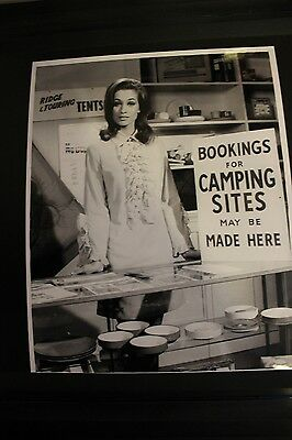 Carry On Camping - Valerie Leon & Hatti Jacques 10X8 Photos X 2