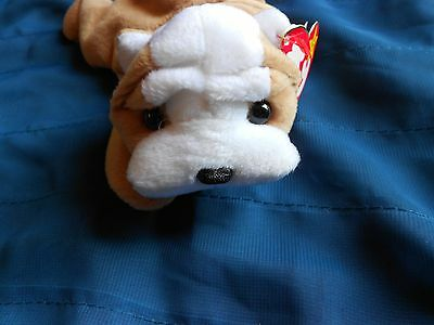 Ty Beanie Baby Wrinkles (Rare) Mint Condition Fareham,Hants