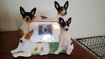 Rat Terrier Dog Picture Frame New In Box Puppy