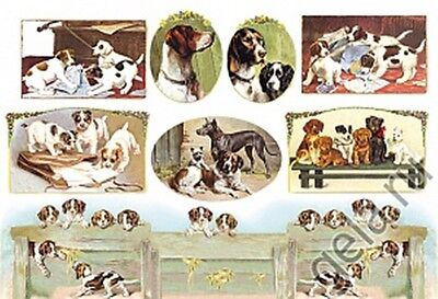 Rice paper 48х33 cm. DOGS. Decoupage. scrapbooking. crafts. STAMPERIA