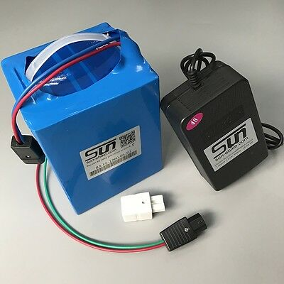 LiFePO4 12V 60AH Battery 10A Charger BMS Rechargeable Solar Energy Power Cycle
