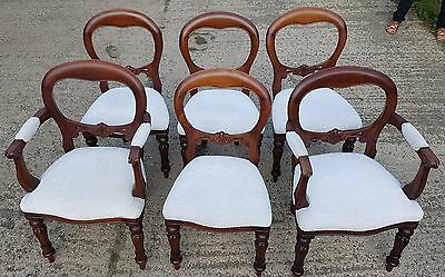 Set of 6 Balloon Back Carved victorian Mahogany Dining Chairs inc 2 Carvers
