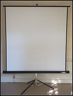Large Film Projector Screen