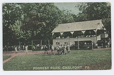 Forrest Park Baseball Stadium Grand Stand CHALFONT PA Bucks County Postcard